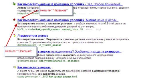 meta-tegi-dlya-sajta3