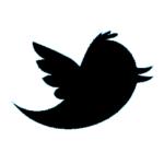 Posting-staryh-zapisej-iz-WordPress-v-Twitter-2